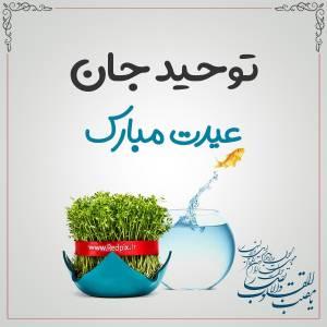 توحید جان عیدت مبارک طرح تبریک سال نو