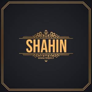 شاهین به انگلیسی طرح اسم طلای Shahin