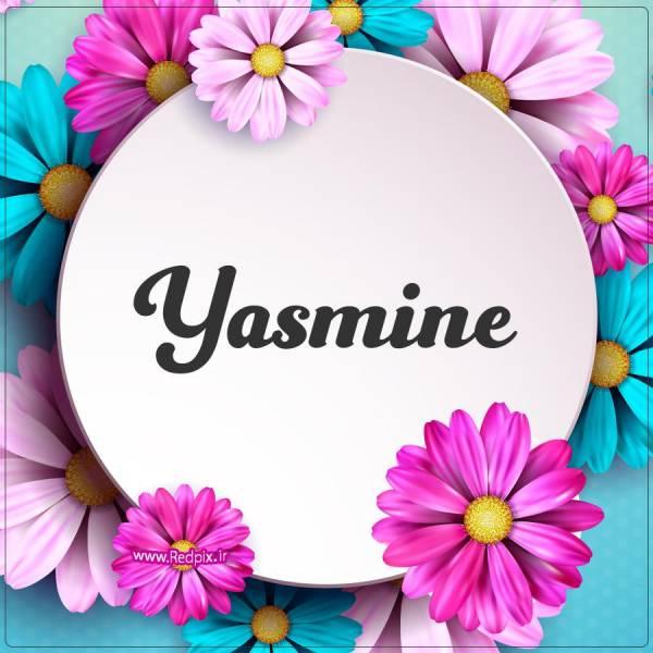 یاسمین به انگلیسی طرح گل های صورتی