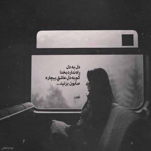 دل به دل راه ندارد بخدا کم به دل عاشق بیچاره