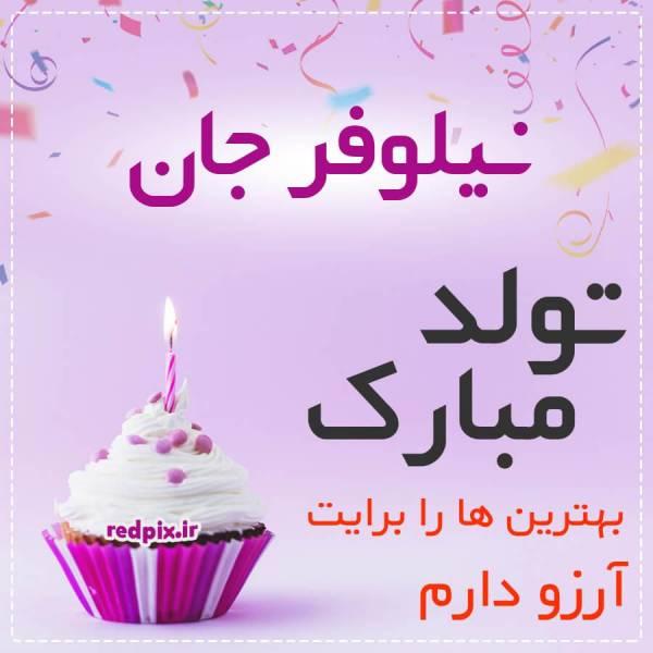 نیلوفر جان تولدت مبارک عزیزم طرح کیک تولد