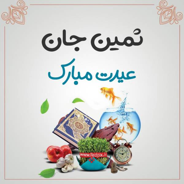 ثمین جان عیدت مبارک طرح تبریک سال نو