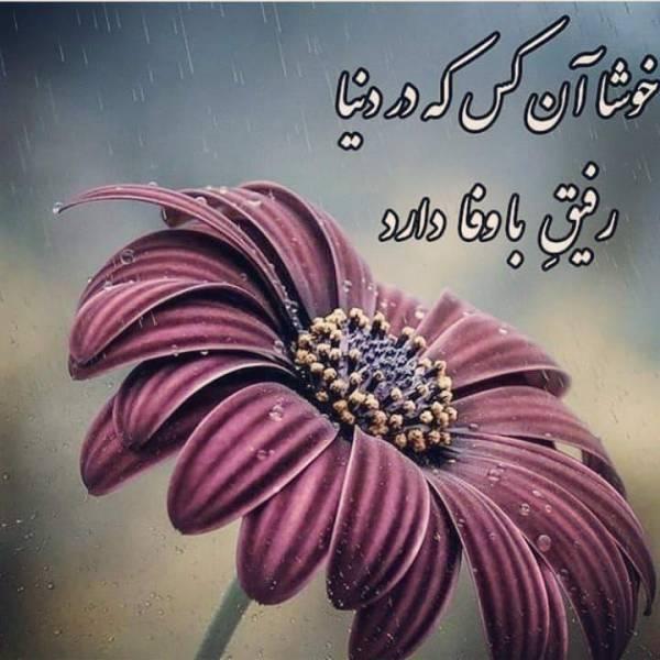 خوشا آن کس که در دنیا رفیق با وفا دارد