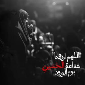 اللهم ارزقنا شفاعة الحسین یوم الورود