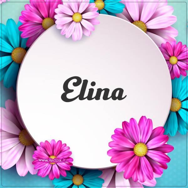 الینا به انگلیسی طرح گل های صورتی